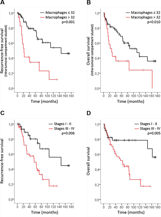 CD68+ macrophage number is associated with poor prognosis in HNSCC.