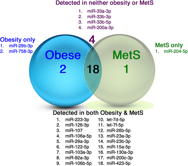miRNAs in plasma specimens from obese and MetS participants.