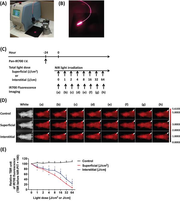 Light sources for NIR-PIT using SLI and ILI.