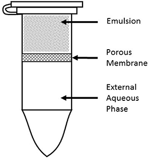 Release apparatus used to capture OP released from MSPE for use in cell viability assays.