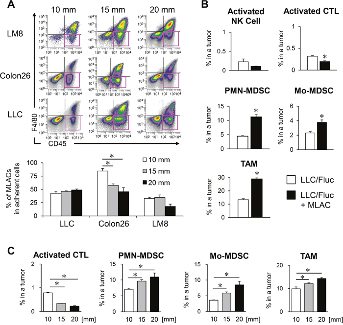 MLACs contribute to MDSCs migration into a tumor tissue.