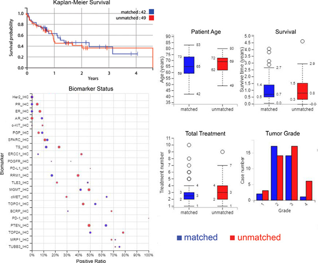 Plots of survival, biomarkers, and patient, treatment and tumour characteristics.