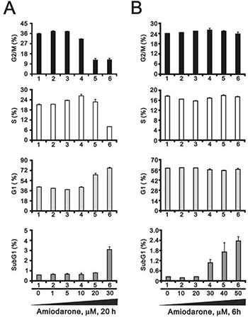 Amiodarone caused cellular apoptosis.