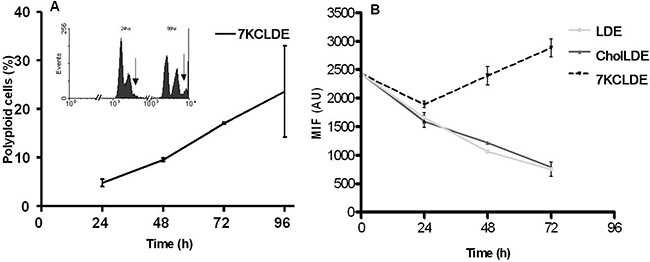 LDE7KC-induced polyploidy, associated with impaired cytokinesis.