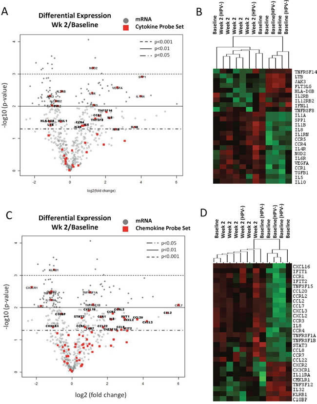 Changes of immune-related gene expression in PBMCs in HNSCC patients after the initial two weeks of CMT.