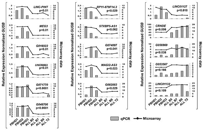 lncRNAs expression validation by Q-PCR.
