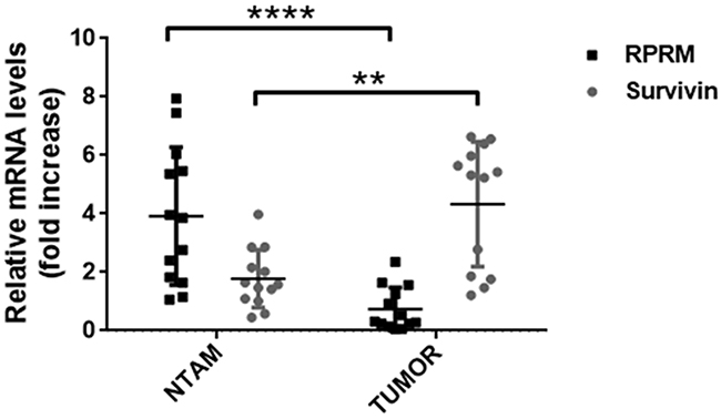 Analysis of Survivin and RPRM mRNA levels in paired tissue samples from primary tumors and non-tumor adjacent mucosa (NTAM) from gastric cancer cases.