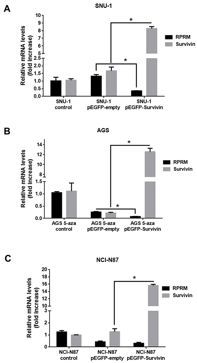 Overexpression of Survivin reduces RPRM mRNA levels in gastric cancer cell lines.
