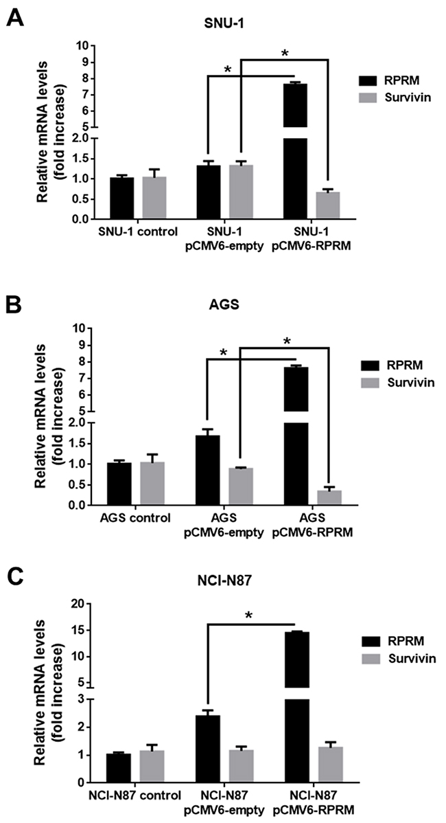 Overexpression of RPRM reduces Survivin levels in gastric cancer cell lines.