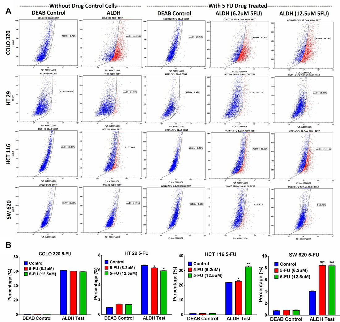 ALDH+ fraction is more resistant to 5-FU in multiple CRC models.