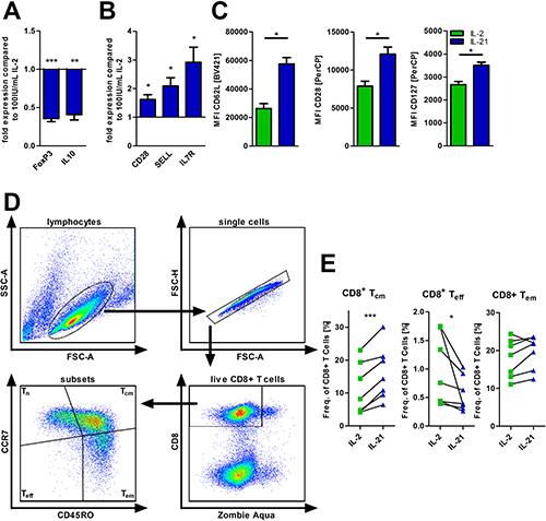IL-21 modulates T-cell differentiation.