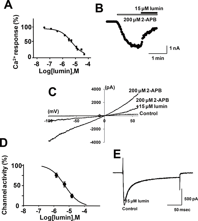 Effect of lumin on the Ca2+ response and channel activity in HEK293 cells expressing mTRPV2.