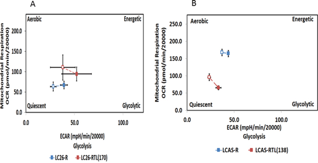 Bioenergetic profiles of the RG and TCL.