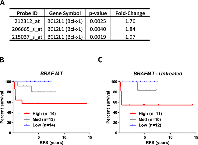 Relapse risk analysis of BRAFMT tumors indicates that Bcl-xL gene expression is associated with prognosis in BRAFMT tumors.