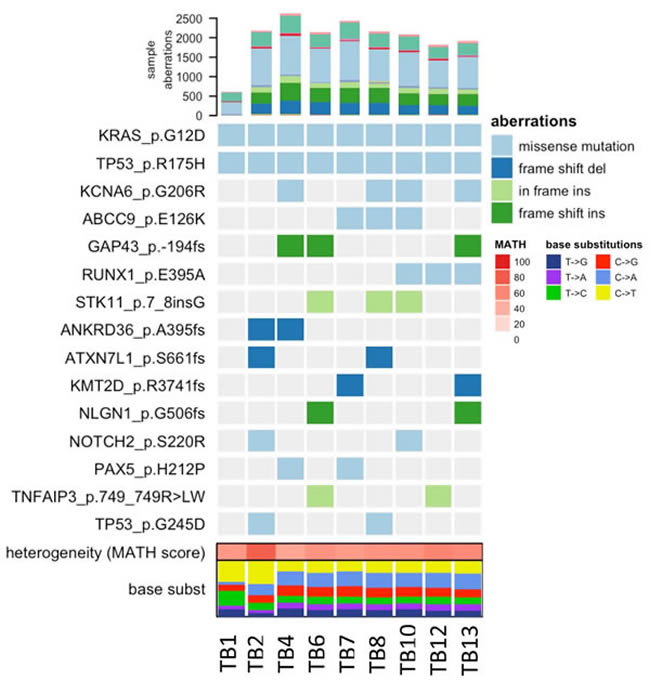 Heatmap of COSMIC mutations detected across tissue samples.