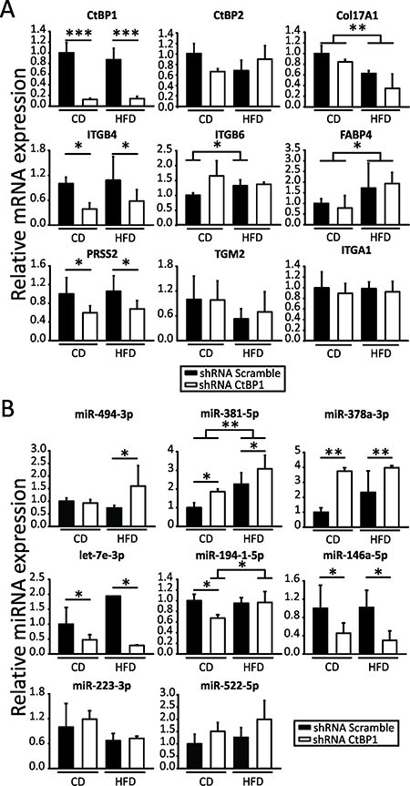 CTBP1 and MeS modulate multiple genes and miRNAs involved in BrCa progression.