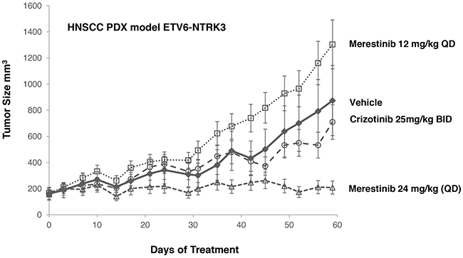 Anti-tumor effect of merestinib or crizotinib in HNSCC PDX model.