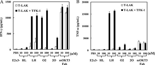 E2x3-Dbs–mediated cytokine production by T-LAK cells.