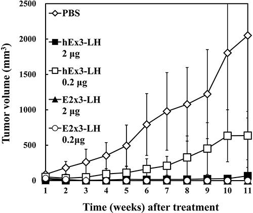In vivo antitumor effects of E2x3-LH.