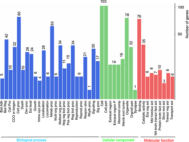 Gene ontology enrichment analysis of DEGs.