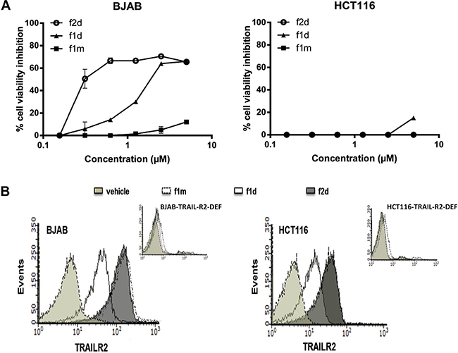 Fluorescent dye Atto488 does not affect peptide mono- or divalent binding activity on BJAB and HCT116.