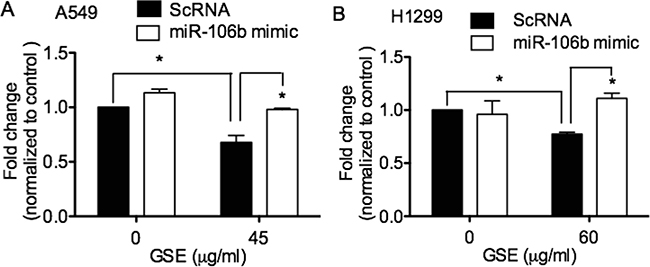 GSE induced anti-proliferative effects in lung neoplastic cells via down-regulation of miR-106b.