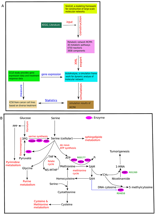 Overview of MCPM.