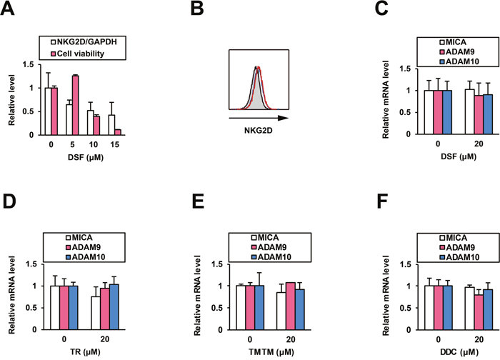Effects of DSF on NK cells and normal human hepatocytes.