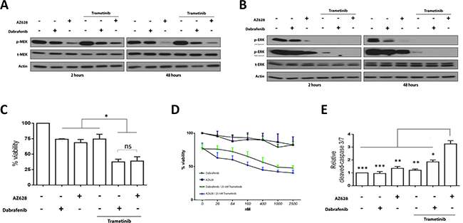 Effects of Dabrafenib, AZ628, and Trametinib alone or in combination on H1666 cells.