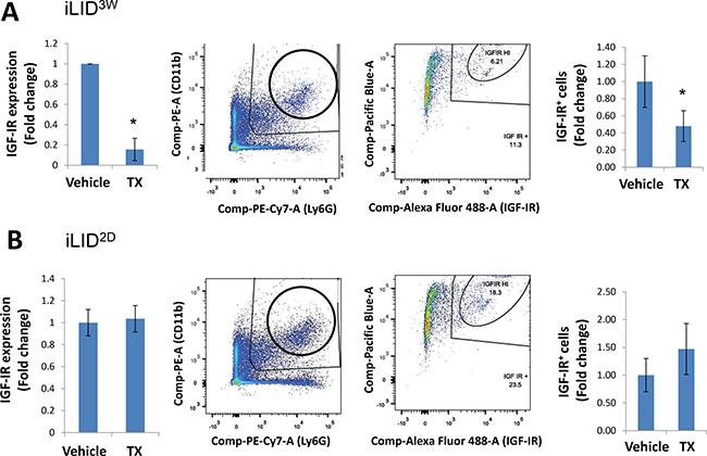 A sustained IGF-I depletion reduces IGF-IR expression levels in neutrophils.