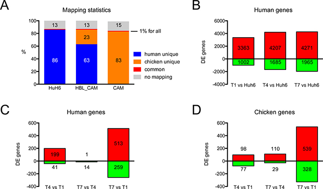 RNA-seq mapping statistics and significantly regulated genes.
