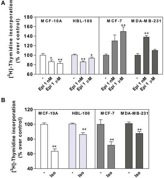 Effect of epinephrine (Epi) and isoproterenol (Iso) on MCF-10A, HBL-100, MCF-7 and MDA-MB-231 cell proliferation.