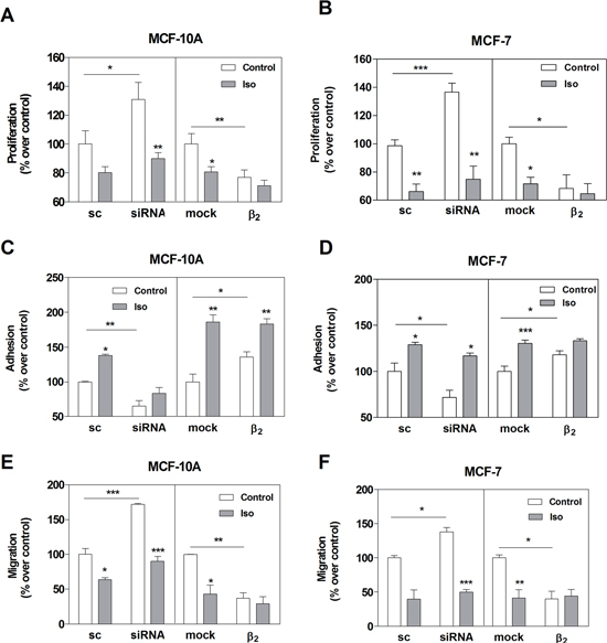 Effect of β2-AR expression on cell proliferation, adhesion and cell migration in MCF-10A and MCF-7 cell lines.
