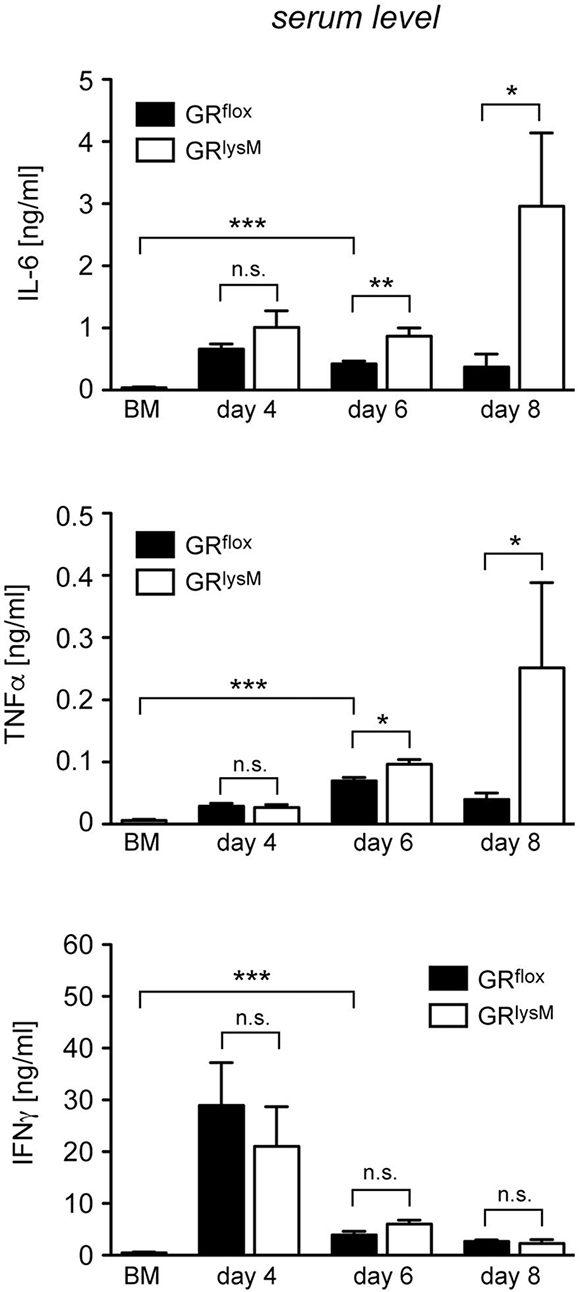 Cytokine serum levels in the early phase of aGvHD in the GRlysM model.