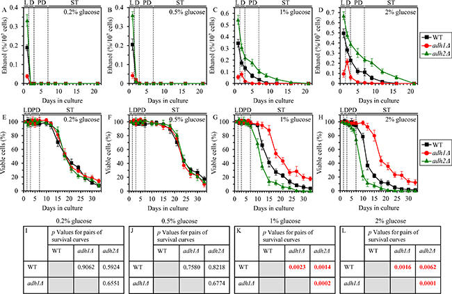 Effects of the adh1Δ and adh2Δ mutations on ethanol concentration and CLS under CR and non-CR conditions.