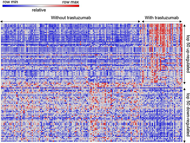 Heat map of the top 100 differentially expressed genes.