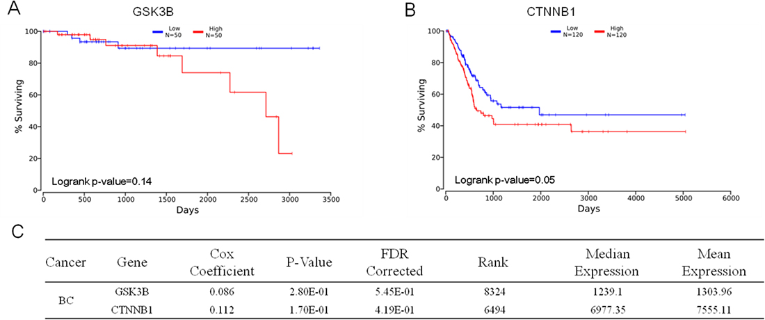 Prognostic value of GSK3B and CTNNB1.