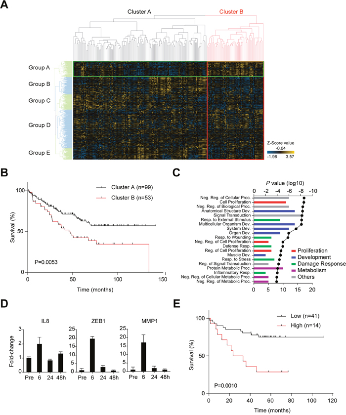 Changes in gene expression during the disruption/reformation process in C45 CTOSs.