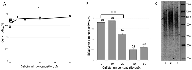Gallotannin inhibits telomerase in vivo.