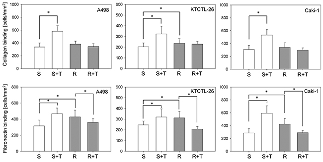 Adhesion of A498, KTCTL-26, and Caki-1 cells to collagen and fibronectin.