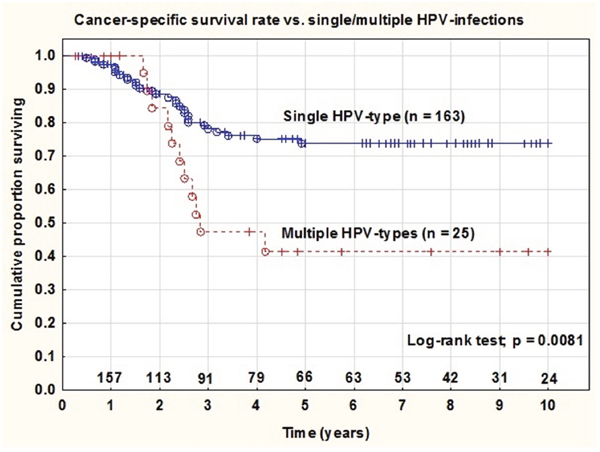 Cancer-specific survival rate in patients with tumors containing single vs. multiple HPV infections.