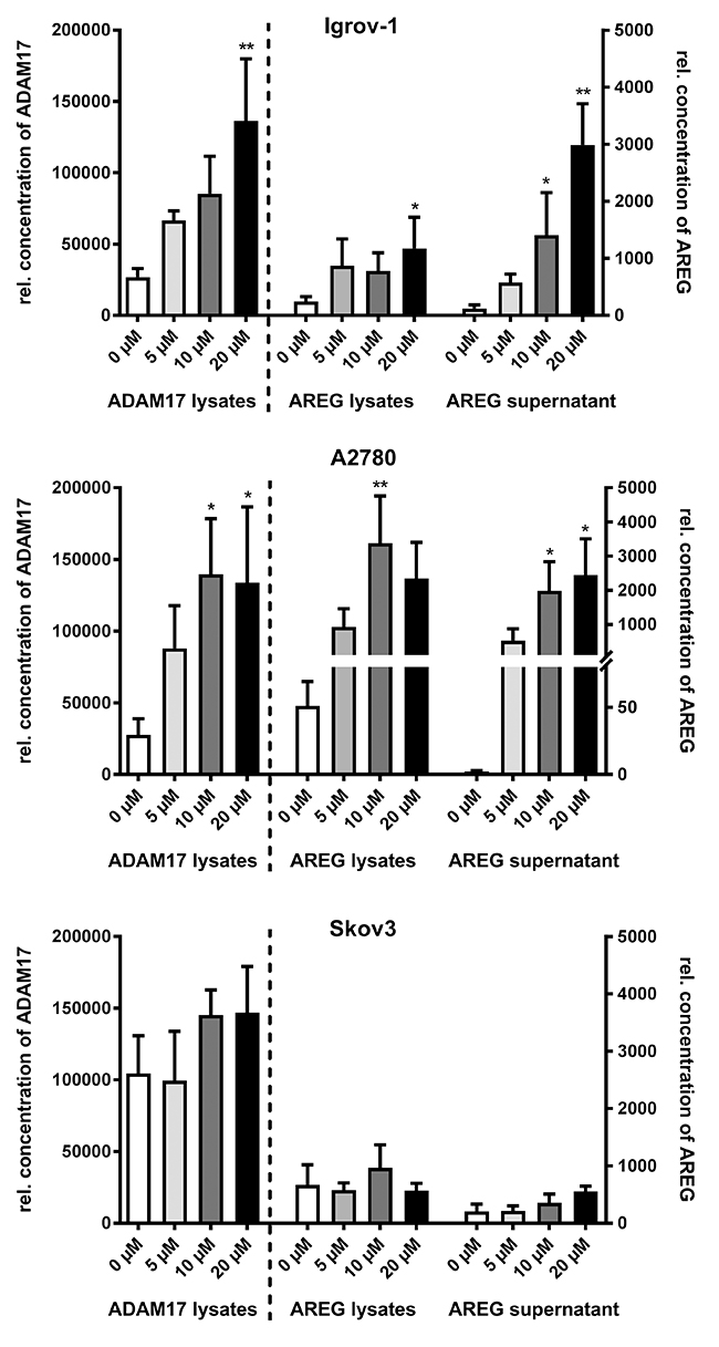 Oncotarget Adam17 Inhibition Enhances Platinum Efficiency In Switching Regulators Using Lm 2575 And 2577 Cisplatin Increases Dependent Areg Release Ovarian Carcinoma Cell Lines