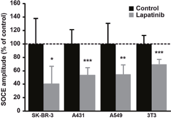 Effect of Lapatinib on SOCE amplitude in a panel of cell lines.