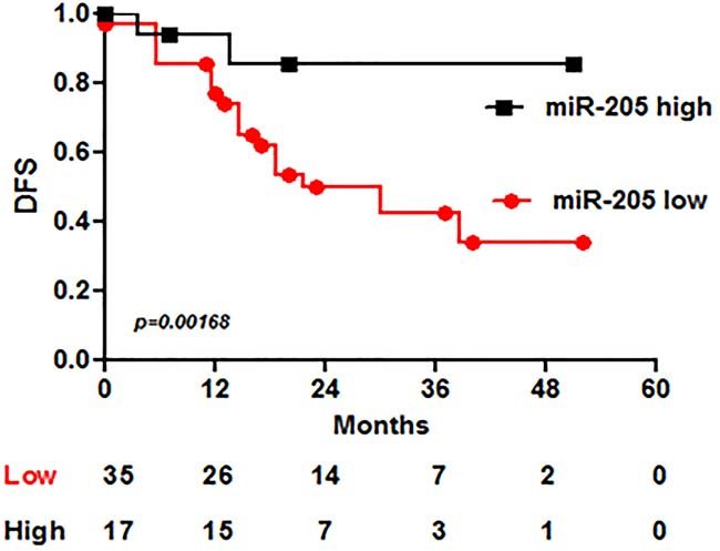 MiR-205 expression associates with DFS in BC patients treated with adjuvant Trastuzumab.