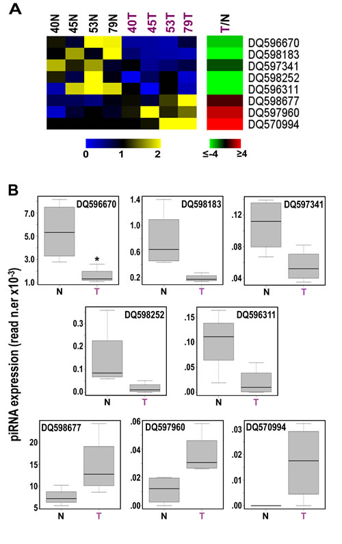 Identification of 8 piRNAs differently expressed in cancer vs normal breast tissues.