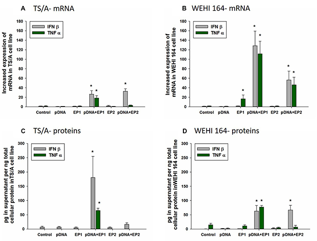 Effect of different electrotransfer pulse protocols on fold changes in mRNA and protein levels of INFβ and TNFα.
