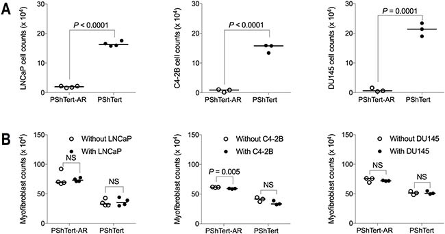 Cell counts after 6 days of direct co-culture between myofibroblasts and other prostate cancer cell lines.