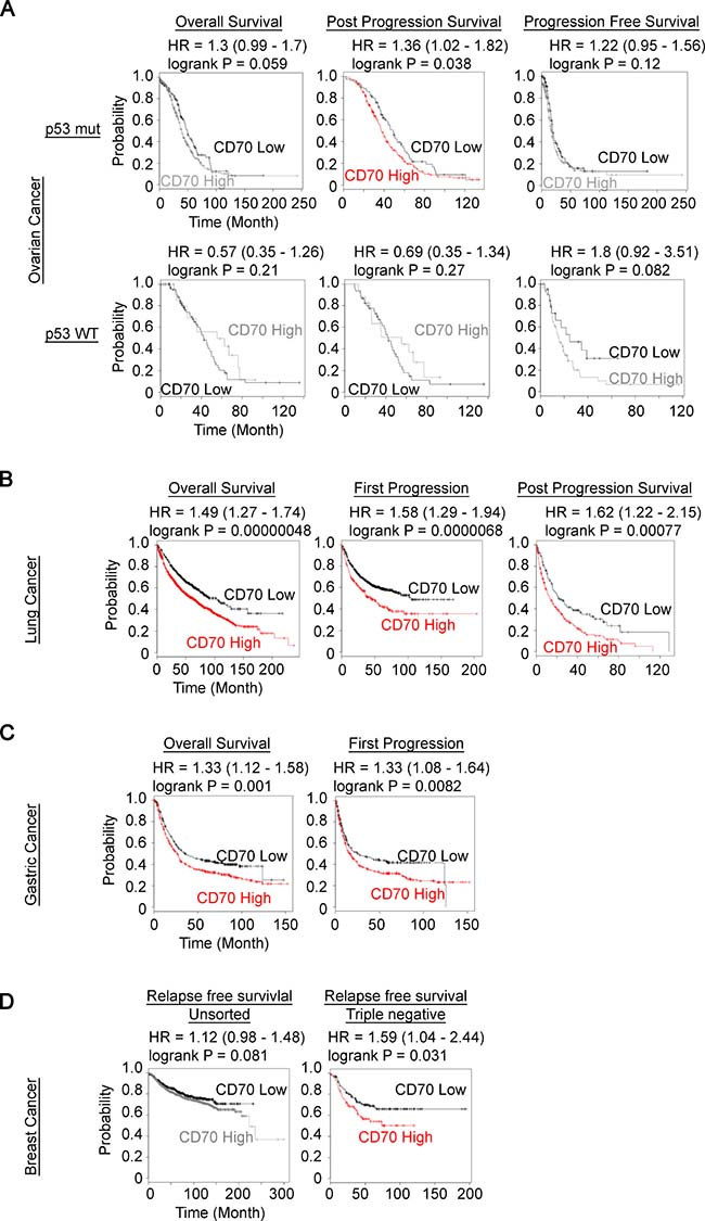 Prognostic value of CD70 expression in human cancer patient.