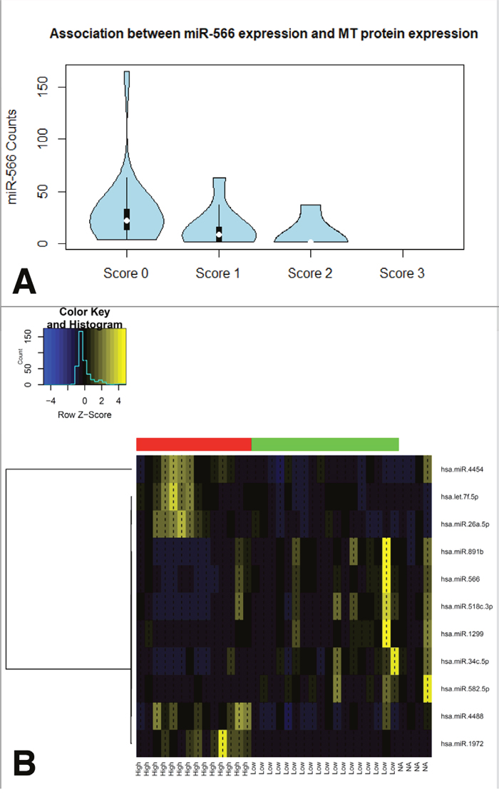 Associations between miRNA expression levels and MT proteinexpression in clinical MPM samples.