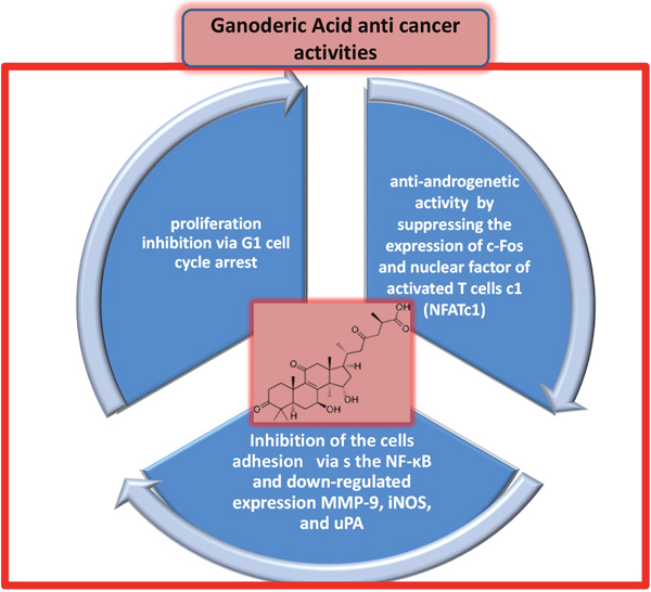 Direct anticancer activities of triterpenes ganoderic acid (chemical structure shown in pink inset).